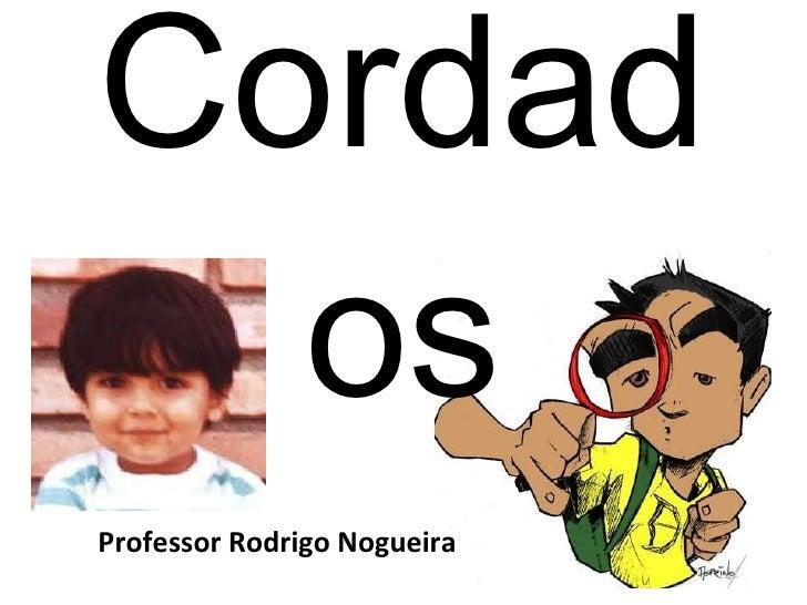 Cordados Professor Rodrigo Nogueira