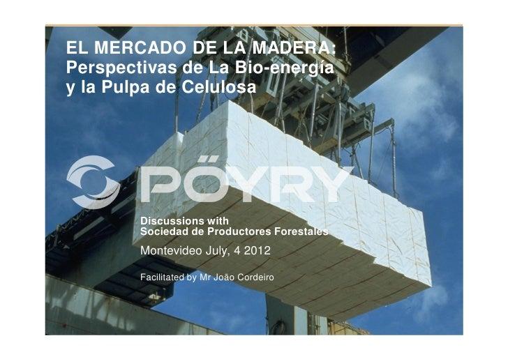 EL MERCADO DE LA MADERA:Perspectivas de La Bio-energíay la Pulpa de Celulosa        Discussions with        Sociedad de Pr...