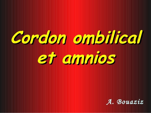 Cordon ombilicalCordon ombilical et amnioset amnios A. Bouaziz