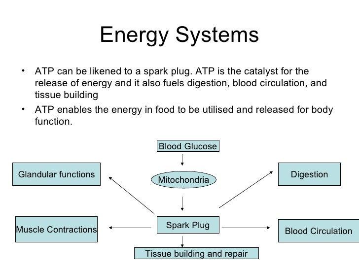energy systems   jpg energy systems   jpg SlideShare