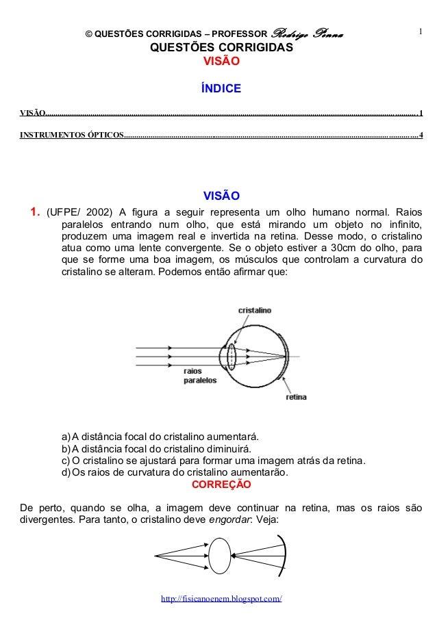 © QUESTÕES CORRIGIDAS – PROFESSOR Rodrigo Penna QUESTÕES CORRIGIDAS VISÃO ÍNDICE VISÃO.......................................