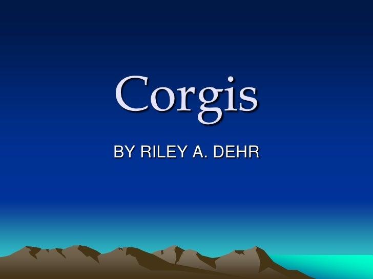 Corgis BY RILEY A. DEHR