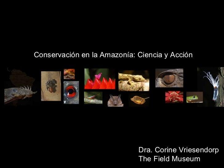 Dra. Corine Vriesendorp The Field Museum Conservaci ó n en la Amaz o n í a: Ciencia y Acci ó n