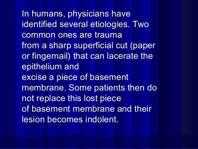 In humans, physicians have identified several etiologies. Two common ones are trauma from a sharp superficial cut (paper o...