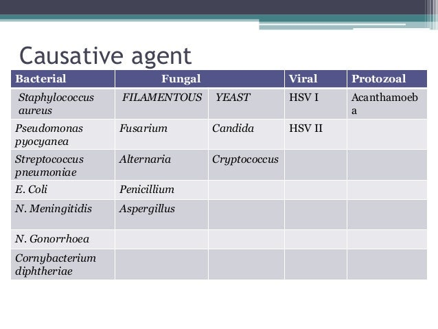 Causative agent Bacterial Fungal Viral Protozoal Staphylococcus aureus FILAMENTOUS YEAST HSV I Acanthamoeb a Pseudomonas p...