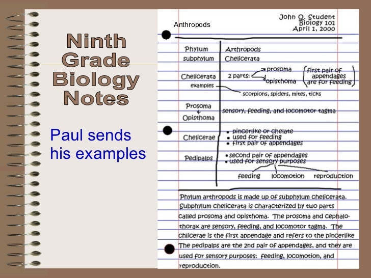 Beautiful Anthropods Ninth Grade Biology Notes Paul Sends His Examples ...