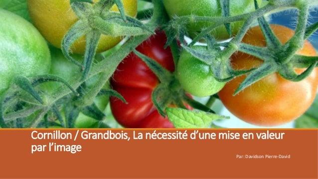 Cornillon / Grandbois, La nécessité d'une mise en valeur par l'image Par: Davidson Pierre-David