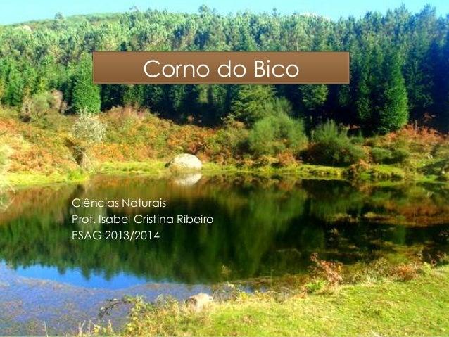 Corno do Bico Ciências Naturais Prof. Isabel Cristina Ribeiro ESAG 2013/2014