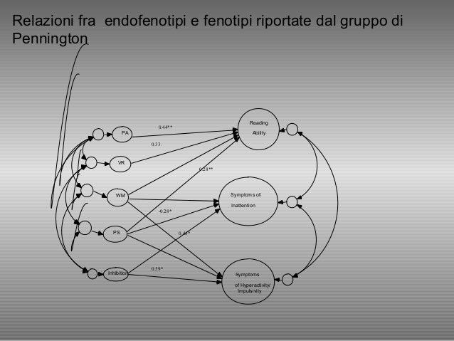 Relazioni fra endofenotipi e fenotipi riportate dal gruppo di Pennington PA VR WM PS Inhibition Reading Ability Symptoms o...