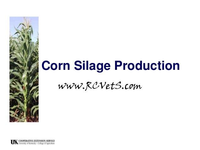 Corn Silage Production www.RCVetS.com