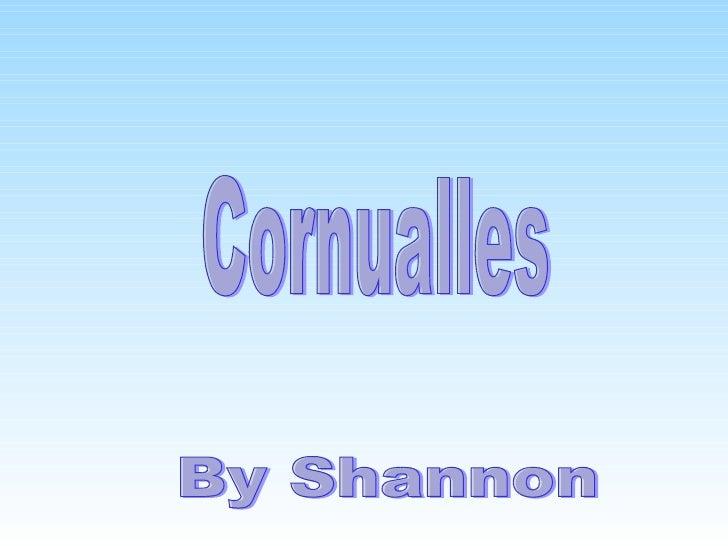 Cornualles By Shannon