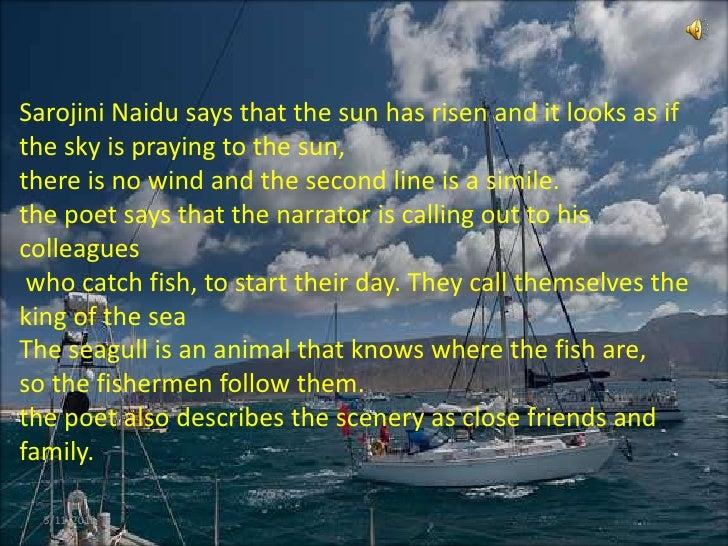 Coromandal Fishers