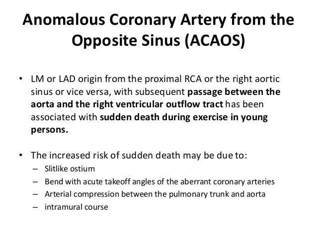 Anomalous Coronary Artery from the Opposite Sinus (ACAOS) • LM or LAD origin from the proximal RCA or the right aortic sin...
