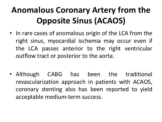 Anomalous Coronary Artery from the Opposite Sinus (ACAOS) • In rare cases of anomalous origin of the LCA from the right si...