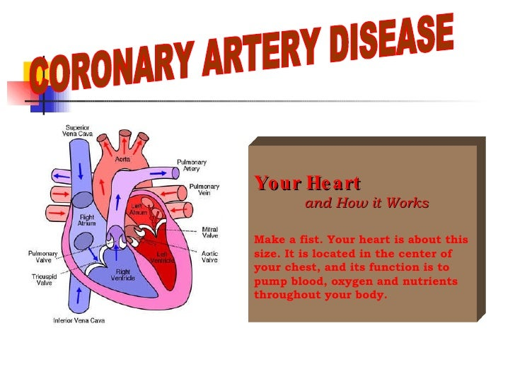 coronary heart disease essays Percutaneous coronary intervention entail a variety of procedure used to completely alleviate or reduce the symptoms of coronary heart disease, one such procedure is the balloon angioplasty which involves the inflation of a balloon guided using a wire, which produces pressure inside the coronary.