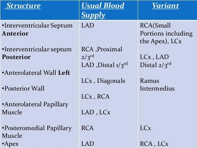 Coronary circulation 14 10-14