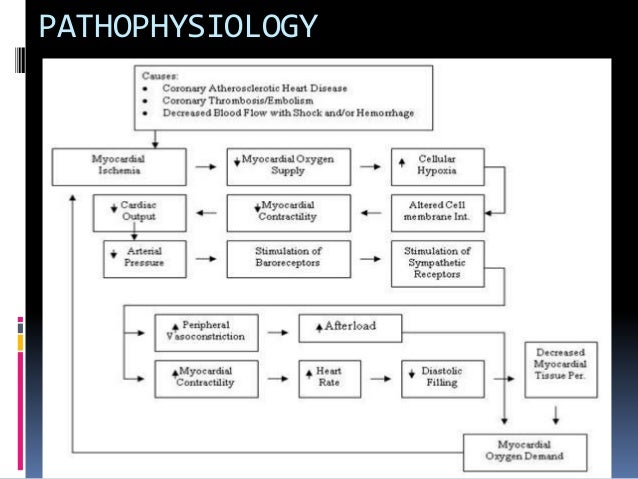 triple vessel coronary artery disease pathophysiology