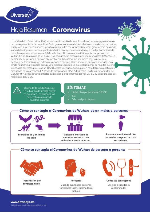 HojaResumen - Coronavirus La familia de los Coronavirus (CoV) es una amplia familia de virus llamada así por las espigas e...