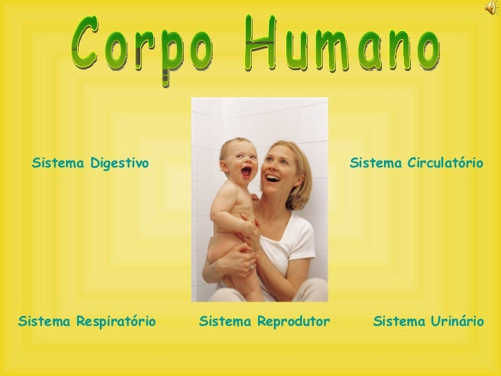 Corpo Humano - vários sistemas Slide 2