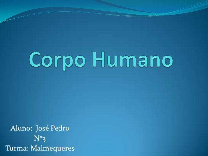 Corpo Humano<br />Aluno:  José Pedro <br />Nº3<br />Turma: Malmequeres <br />