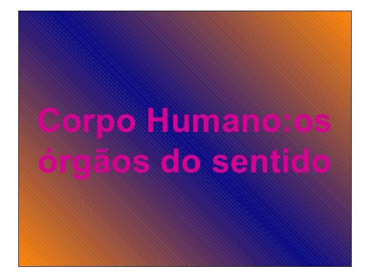 Corpo Humano:os órgãos do sentido