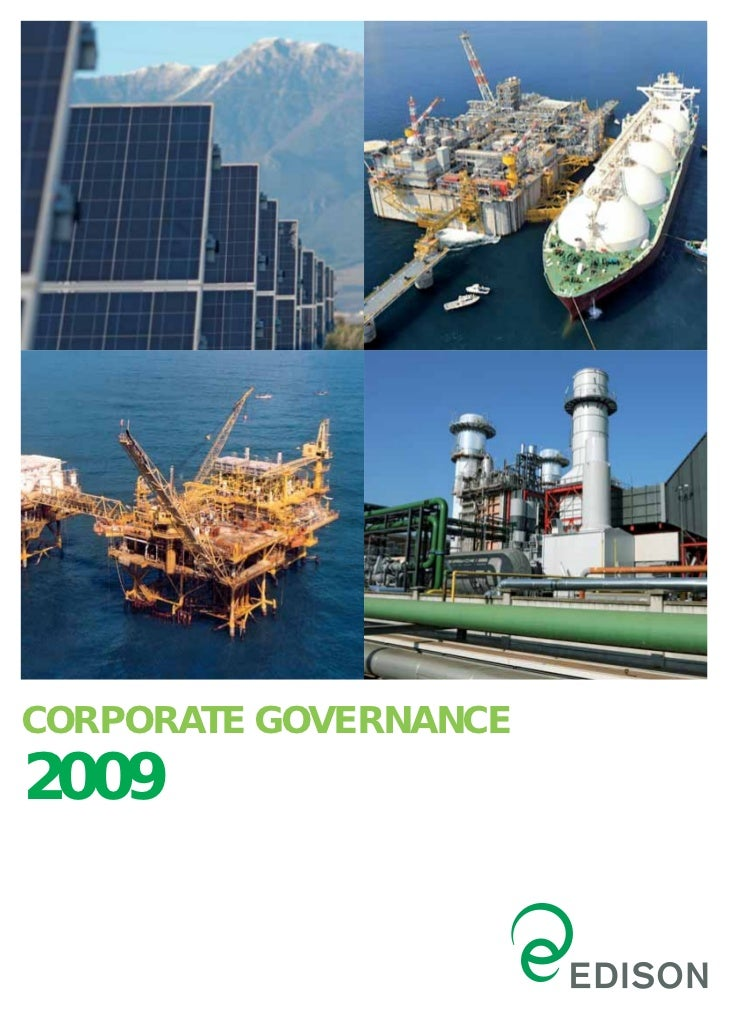 CORPORATE GOVERNANCE2009