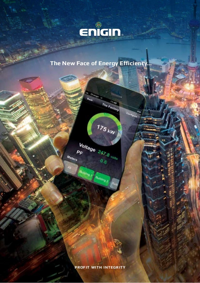 The New Face of Energy Efficiency... PROFIT WITH INTEGRITY