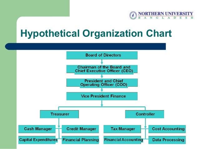 Hypothetical Organization Chart