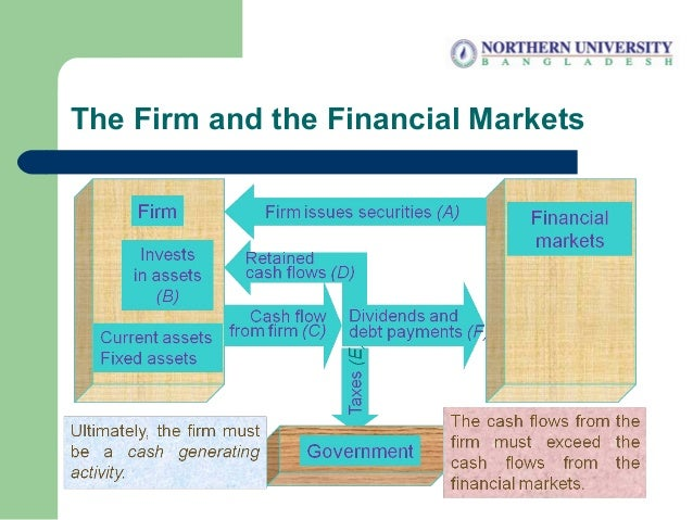 The Firm and the Financial Markets