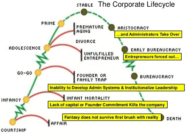 Corporate life cycles adizes pdf viewer