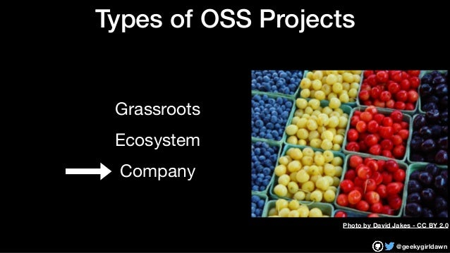 @geekygirldawn Types of OSS Projects Grassroots  Ecosystem  Company Photo by David Jakes - CC BY 2.0