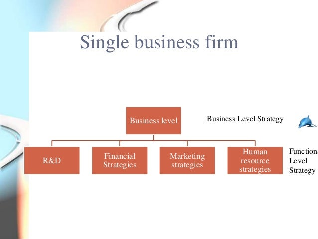 Single business firm               Business level          Business Level Strategy                                        ...