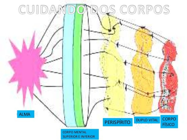 ALMA CORPO MENTAL SUPERIOR E INFERIOR PERISPÍRITO DUPLO VITAL CORPO FÍSICO