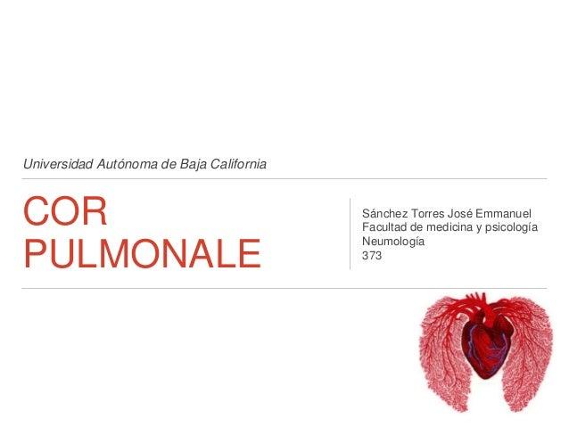 Universidad Autónoma de Baja California COR PULMONALE Sánchez Torres José Emmanuel Facultad de medicina y psicología Neumo...