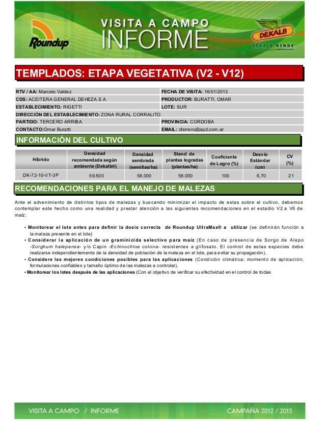 TEMPLADOS: ETAPA VEGETATIVA (V2 - V12)RTV / AA: Marcelo Valdez                                           FECHA DE VISITA: ...