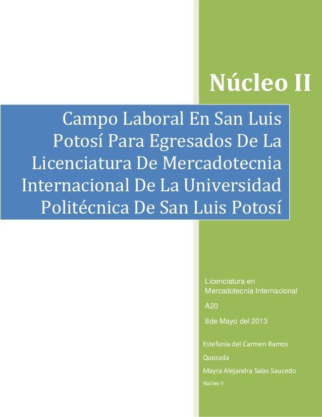 Núcleo IIEstefania del Carmen RamosQuezadaMayra Alejandra Salas SaucedoNúcleo IICampo Laboral En San LuisPotosí Para Egres...