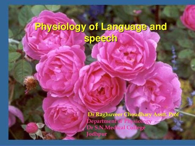 Dr Raghuveer Choudhary Asstt. Prof.Department of PhysiologyDr S.N.Medical CollegeJodhpurPhysiology of Language andspeech