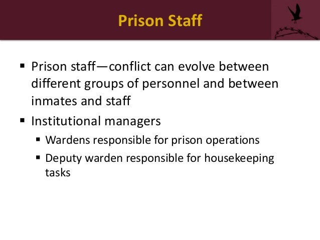What is chain of command of corrections officer?