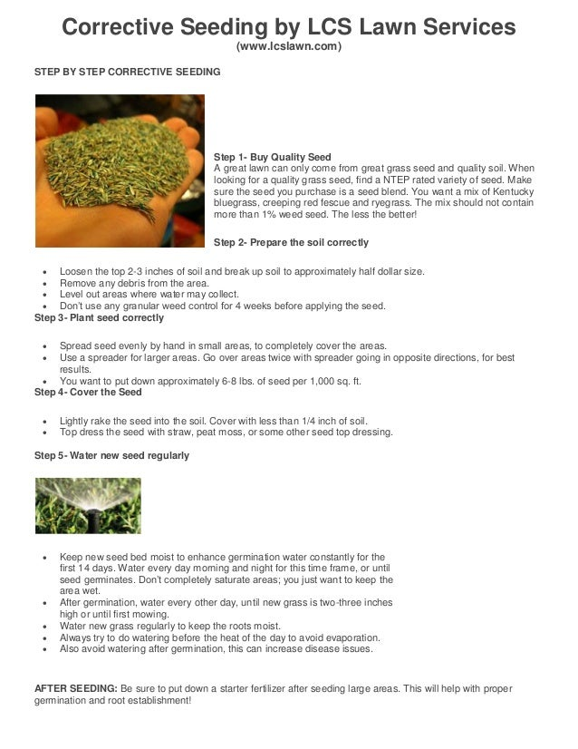 Corrective Seeding by LCS Lawn Services (www.lcslawn.com) STEP BY STEP CORRECTIVE SEEDING Step 1- Buy Quality Seed A great...