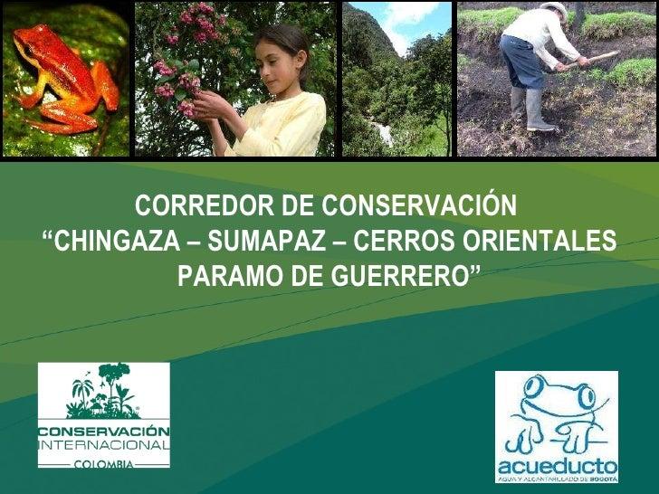 """CORREDOR DE CONSERVACIÓN  """"CHINGAZA – SUMAPAZ – CERROS ORIENTALES PARAMO DE GUERRERO"""""""