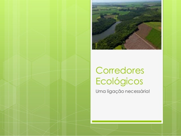 Corredores Ecológicos Uma ligação necessária!