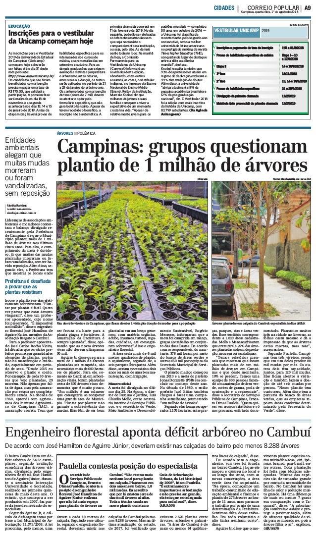Paulella contesta posição do especialista Campinas: grupos questionam plantio de 1 milhão de árvores ÁRVORES ||| POLÊMICA ...