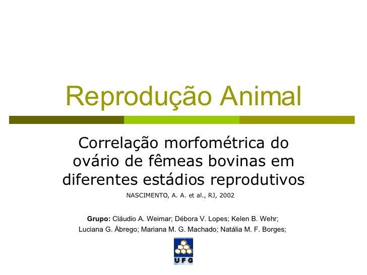 Reprodução Animal Correlação morfométrica do ovário de fêmeas bovinas em diferentes estádios reprodutivos Grupo:  Cláudio ...