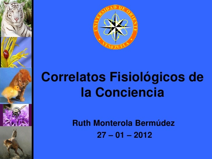 Correlatos Fisiológicos de      la Conciencia    Ruth Monterola Bermúdez          27 – 01 – 2012