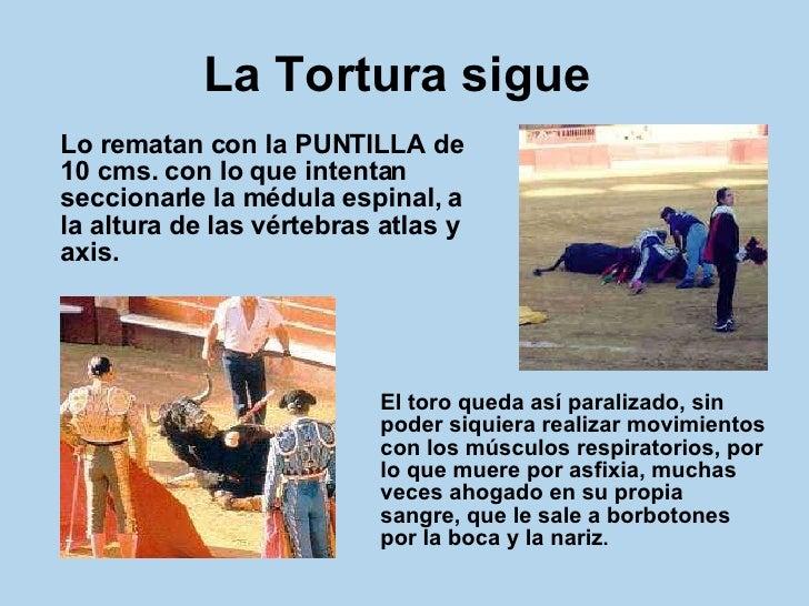 La Tortura sigue   <ul><li>Lo rematan con la PUNTILLA de 10 cms. con lo que intentan seccionarle la médula espinal, a la a...