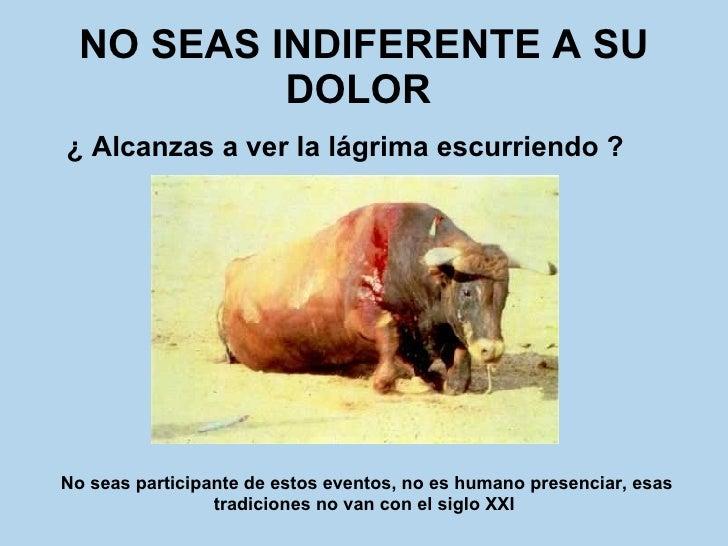 NO SEAS INDIFERENTE A SU DOLOR   <ul><li>¿ Alcanzas a ver la lágrima escurriendo ?   </li></ul>No seas participante de est...