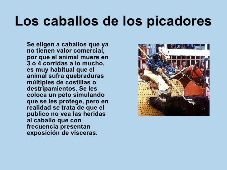 Los caballos de los picadores   <ul><li>Se eligen a caballos que ya no tienen valor comercial, por que el animal muere en ...