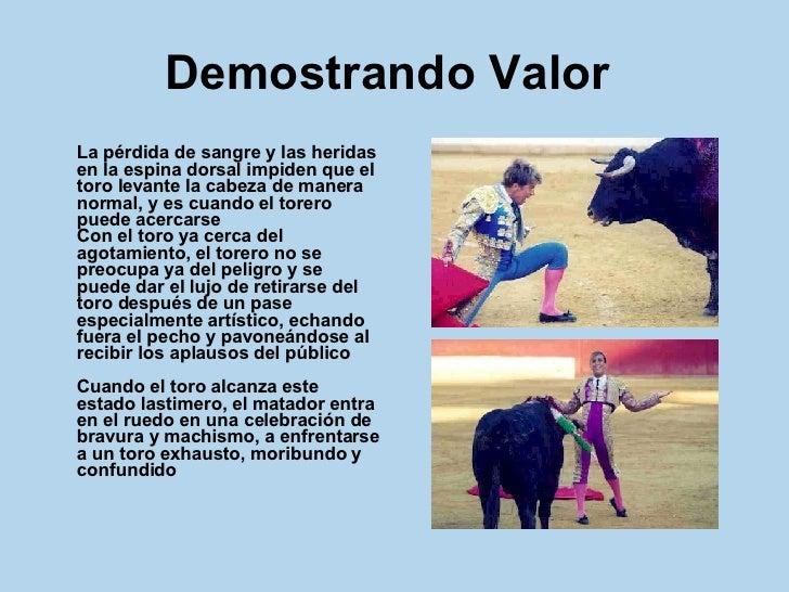 Demostrando Valor   <ul><li>La pérdida de sangre y las heridas en la espina dorsal impiden que el toro levante la cabeza d...