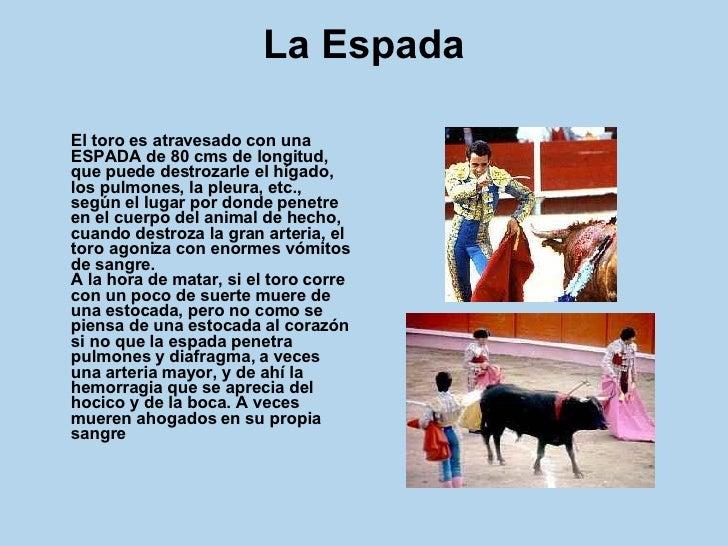 La Espada <ul><li>El toro es atravesado con una ESPADA de 80 cms de longitud, que puede destrozarle el hígado, los pulmone...