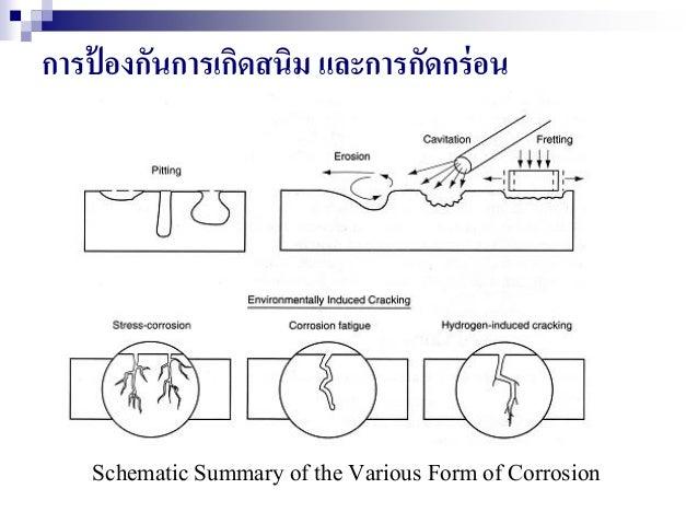 การป้ องกันการเกิดสนิม และการกัดกร่อน Schematic Summary of the Various Form of Corrosion